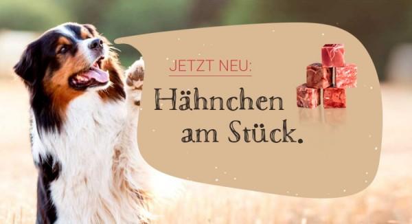 Blog_Haehnchen_neu