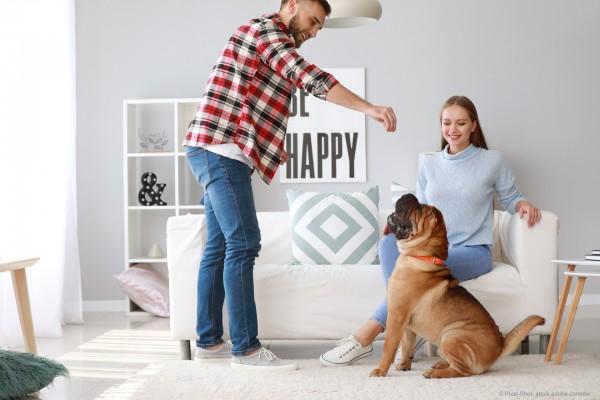 graf-barf-hundebeschaeftigung